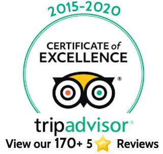 Trip Advisor Badge 2015-2020